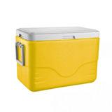 Caixa Térmica Cooler 28qt 26,5 Litros Varias Cores Coleman