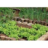 Projeto Horta Orgânica Completa Passo A Passo