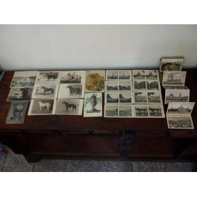 Coleção Lote Cartões Postais Antigos Nacionais Estrangeiros