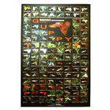 Azoo Aquarium Decor Guppy Poster