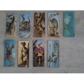 Coleção De Cards Dinossauro E Cães