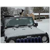 Siete Sparta Hamaca Para Techo De Automóvil Para Jeep Wrang