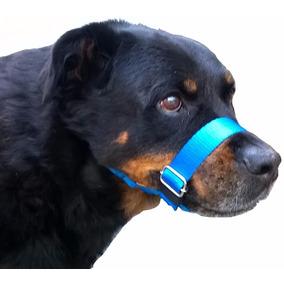 Focinheira Para Cães Passeio Coleira