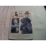 Libro El Caniche (perros, Mascotas, Entrenamiento)