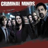 Seriado Criminal Minds - 1ªa13ª Temporada Dublado + Encarte.