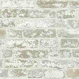 York Wallcoverings Papel Tapiz, Damasco, Terciopelo, Fresco