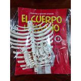 Coleccion Cuerpo Humano N° 3-4-7-8-9-10-11
