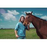 Apostila Aprenda Tudo Sobre Criação De Cavalos Doma Racional