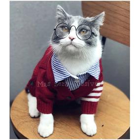 Oculos Pet Transparente - Cachorros no Mercado Livre Brasil b182ca68da