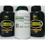 2 Tribulus Terrestris Com Maca 120 Caps + Dilatex