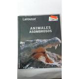 Libro Animales Asombrosos