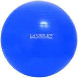 Bola Suiça Azul Yoga Pilates Fitness 65cm Live Up