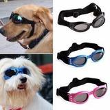 Oculos De Sol Para Caes Proteçao Uv Grande Porte Pet Shop 11c2e0913a