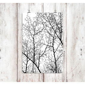 Poster Natureza 0001 - 60x90 Cm Papel Fotografico Fujicolor