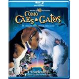 Blu-ray Como Cães E Gatos Dublado & Legenda