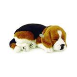 Mascotas Perfectas International Sleeping Beagle Plush