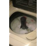 Máquina De Lavar Brastemp Gran Luxo