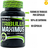 Tribulus Terrestris 1500mg 90 Cáps Biotech 90% Saponina