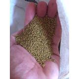 Semillas De Alfalfa Tipo 7/8