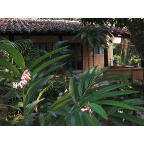 Vendo Terreno Con Actividad Eco-turistica
