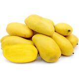 Frutales Planta De Mango Ataulfo Injertado Por Mayoreo