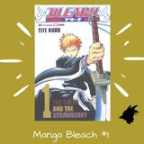 Panini Manga Bleach Latino Tomo 1