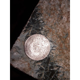 Moneda Arg 2centavos Del Año 1893 Cuanto Pagan Por Ella