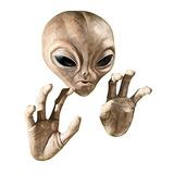 Design Toscano Roswell The Alien - Placa Decorativa, Senci