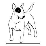 Adesivo Pet Cachorro Bull Terrier Carro Moto