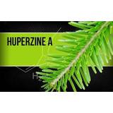 Huperzine A 60 Capsulas 200mcg Melhora As Funções Cognitivas