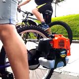 Motor De Roçadeir 58cc (bicicleta / Kart)