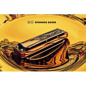Armonicas Mg Custom Harp Luthier