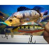 Isca Whopper Floating Popper 10cm 13gr Bass, Traíra E Tucuna