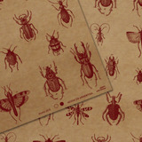 Papel Kraft Estampado Scrapbooking Encuadernaciones Insectos