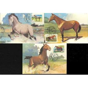 1985 Máximos Postais 107/109 Cavalos De Raças Brasileiras
