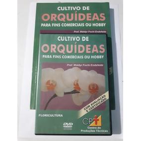 Curso Cultivo De Orquídeas Para Fins Comerciais Ou Hobby