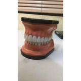Macromodelo Dental