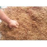 Microrganismos Eficientes (mm) Para Uso Agícola 1kg