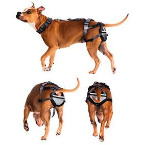 Cinturón De Castidad Para Perros - Sistema Anti-cría De Ani