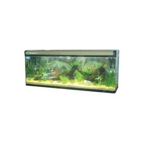 Aquario Comp.bl-1800f 620 Litros 180x48x72cm Canto Curvo