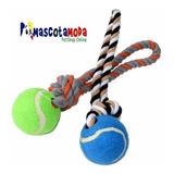 Juguete Para Perros Pelota De Tennis Con Cuerda