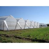 Compro Estructura De Invernadero