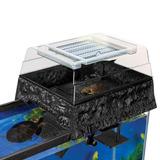 Pennplax Tortuga Decorativa Plataforma Para Tomar Sol