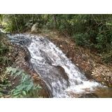 Sítio Em Bom Jardim De Minas Com 16 Hectares, Bastante Água, Uma Pequena Cachoeira Divisa Terreno. - 4140