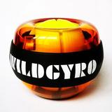 Esfera Mão Fitness Power Ball 30lbs Giroscopio Corda + Força