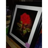 $3490 - Cuadro - Arte Tridimensional 3d - Flor Roja