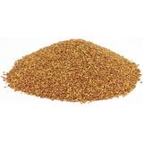 Alfalfa - Semillas