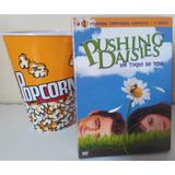 Pushing Daisies 1ª Temporada + Balde De Pipoca De Brinde