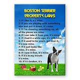 Imanes De Refrigerador,imán De Boston Terrier De Las Ley..