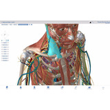 Anatomía Humana 3d Atlas Muscle Body Premium Envio Digital